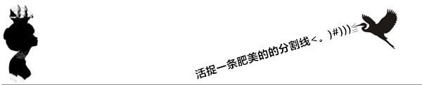黑白分割线素材3