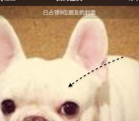 微信运动广告位出租3.jpg